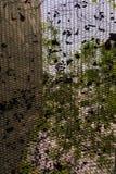 Blattnettodach von der Ansicht von unten Stockfoto