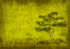 Blattpergament mit Abbildung des Baums Stockfotos