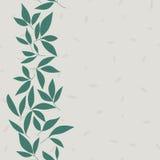 Blattvektormuster Nahtlose Gekritzelblumen Lizenzfreies Stockfoto