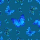 Blau des Schmetterlinges 07 vektor abbildung
