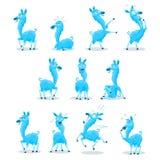 Blaues Lama Stockfotografie