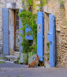 Blau gemalte Türen in Provence Stockfotografie