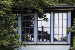 Blau gestaltet die Fenster eines Hauses und reflektiert einen Baum stockbild