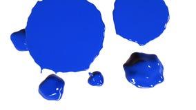 Blau lässt Rückgänge fallen und verbreitet in der Zeitlupe stock footage