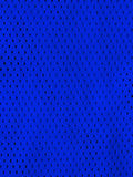 Blau trägt Trikot zur Schau Lizenzfreies Stockfoto