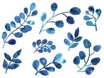 Blau- und Purpurblattverzierung Lizenzfreie Stockbilder
