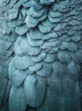 Blau versieht Hintergrund mit Federn Stockfotos