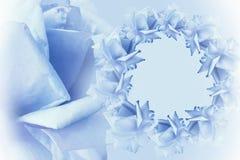 Blau-weißer schöner mit Blumenhintergrund Tulpen und Winde auf einem weißen Hintergrund Feld des Blaus blüht Rosen auf hellblauem stockbild