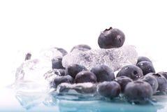 Blaubeere auf Eis lizenzfreie stockbilder