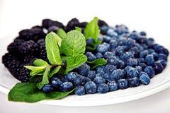Blaubeere mit Maulbeere und Minze Lizenzfreies Stockfoto