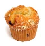 Blaubeere-Muffin lizenzfreie stockfotografie