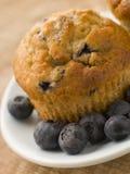 Blaubeere-Muffin auf einer Platte mit Blaubeeren lizenzfreies stockbild