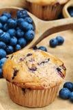 Blaubeere-Muffins Lizenzfreie Stockfotos