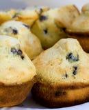 Blaubeere-Muffins Stockfotografie