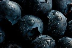 Blaubeeren Stockfotos