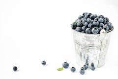 Blaubeeren Lizenzfreies Stockfoto
