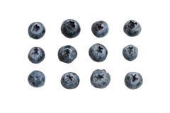 Blaubeeren auf Weiß lokalisiertem Hintergrund lizenzfreies stockbild