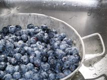 Blaubeeren in der Wanne stockfotos