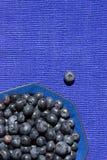 Blaubeeren in einer blauen Schüssel stockbild