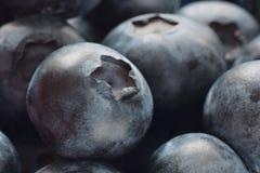 Blaubeeren Stock Image