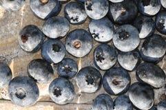 blaubeeren Geschmackvoll, Nachtisch stockbild