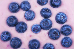 Blaubeeren mit Joghurt Stockbild
