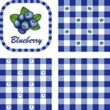 Blaubeeren u. Gingham-nahtlose Muster Lizenzfreie Stockfotos