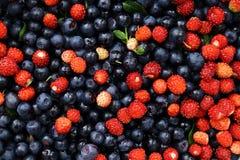 Blaubeeren und Erdbeeren auf einem alten Holztisch Stockfotos