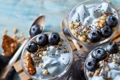 Blaubeeren und Jogurt chia Puddingparfait Lizenzfreie Stockfotografie