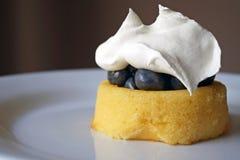 Blaubeerenshortcake mit Schlagsahne Stockbild