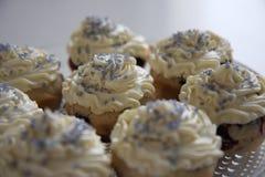 Blaubeerkleine kuchen stockbild