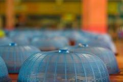 Blaue Abdeckhaube und Mittagessen in der Schule lizenzfreies stockfoto