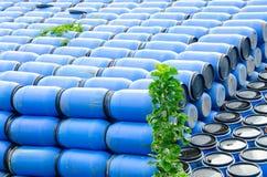 Blaue Agavenfässer Lizenzfreie Stockfotos