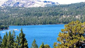 Blaue Ansicht Stockbilder