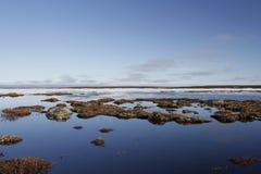 Blaue arktische Landschaft Lizenzfreie Stockbilder