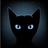 Blaue Augen der schwarzen Katze lizenzfreie abbildung