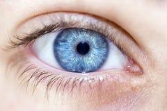 Blaue Augen des verständnisvollen Blickes Lizenzfreies Stockbild