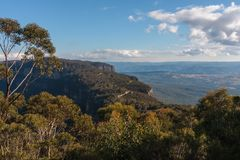 Blaue Berge in NSW, Australien stockbild