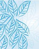 Blaue Blätter Stockbild