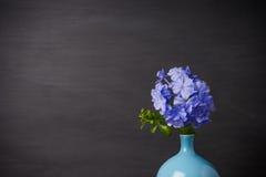 Blaue Bleiwurzblumen im Vase Lizenzfreie Stockbilder