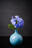 Blaue Bleiwurzblumen im Vase Stockfotografie
