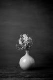 Blaue Bleiwurzblumen im Vase Schwarzweiss-Ton Stockbilder