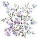 Blaue Blumen, Aquarell Lizenzfreie Stockfotos