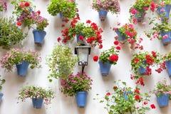 Blaue Blumentöpfe und rote Blumen auf einer weißen Wand mit Weinlese lan Lizenzfreie Stockbilder
