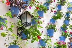 Blaue Blumentöpfe und Blumen auf einer weißen Wand mit Weinleselaterne Lizenzfreie Stockfotografie