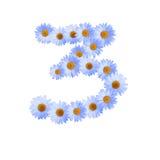 Blaue Daisy Number Three Lizenzfreies Stockfoto
