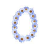 Blaue Daisy Number Zero Stockbilder