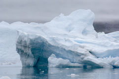 Blaue Eisberge Narsarsuaq Stockbild
