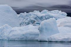 Blaue Eisberge Narsarsuaq Stockfotografie