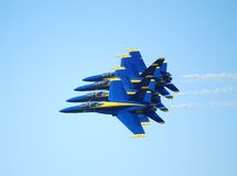 Blaue Engel   Stockfotografie